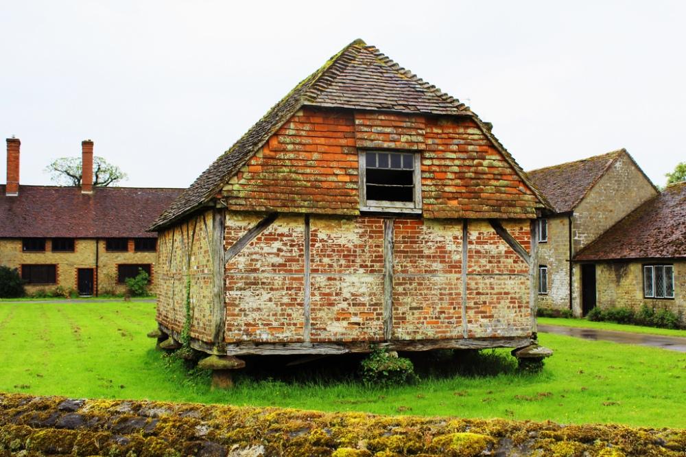 Cowdray Ruins, Alexandra Pinhorn 6