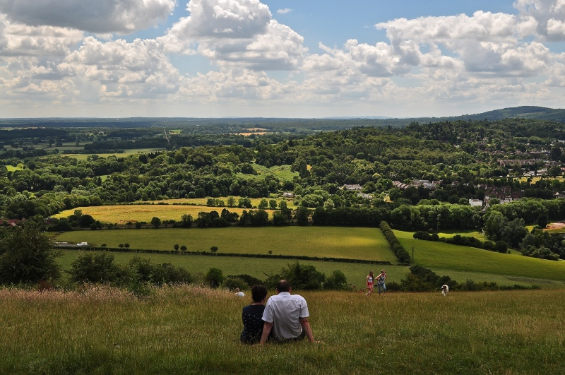 View from the summit of Box Hill
