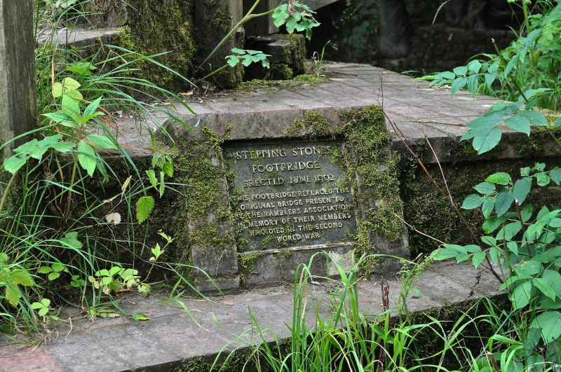 Stepping Stones Footbridge, Box Hill