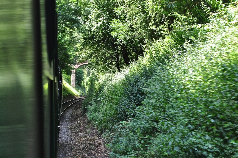 The Watercress Line