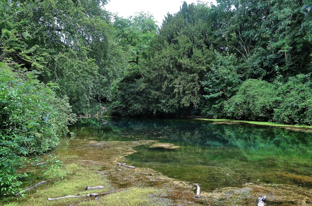 Silent Pool, Shere, Surrey