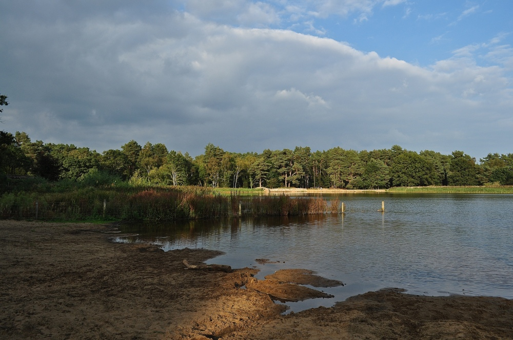 Frensham Little Pond, Surrey