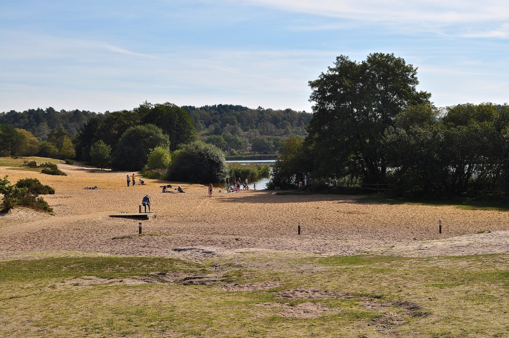 Frensham Great Pond, Surrey