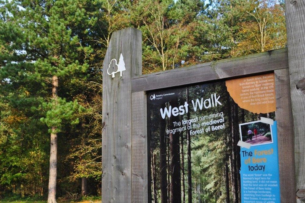 West Walk, Hampshire, England