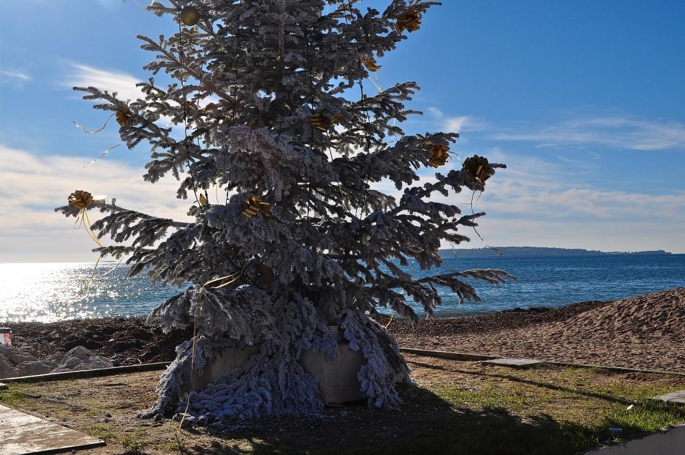 Golfe-Juan, Cote D'Azur - beachfront Christmas Tree