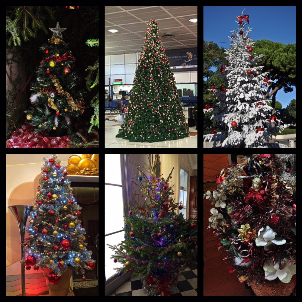 European Christmas Trees