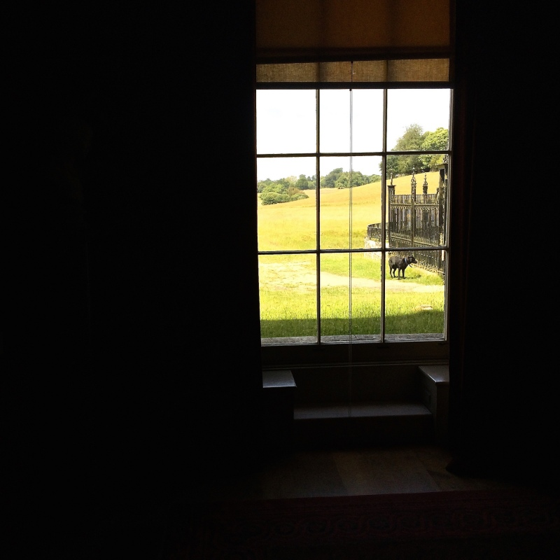 Petworth House by Sue Lowry - family home