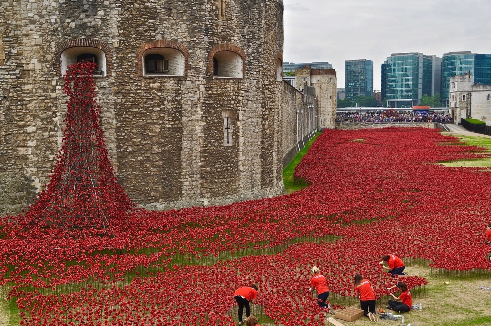 The significance of the red poppy